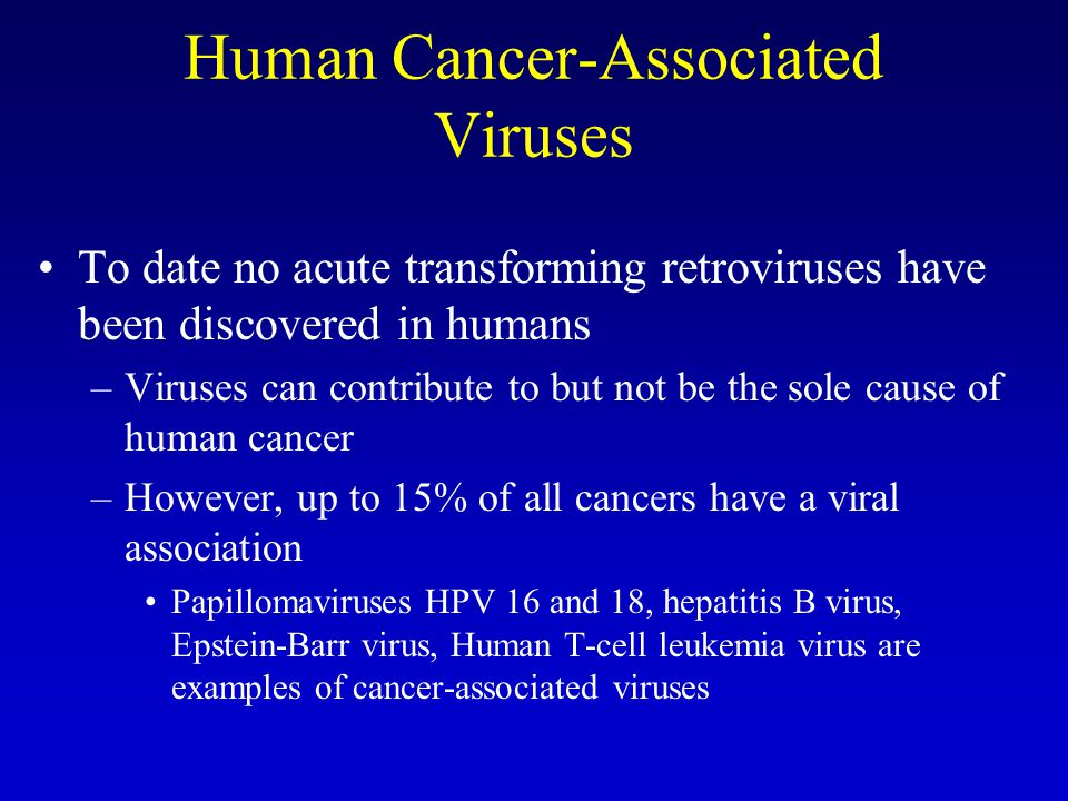 Human Cancer-Associated Viruses To date no acute transforming retroviruses have been discovered in humans –Viruses can contribute to but not be the sole cause of human cancer –However, up to 15% of all cancers have a viral association Papillomaviruses HPV 16 and 18, hepatitis B virus, Epstein-Barr virus, Human T-cell leukemia virus are examples of cancer-associated viruses