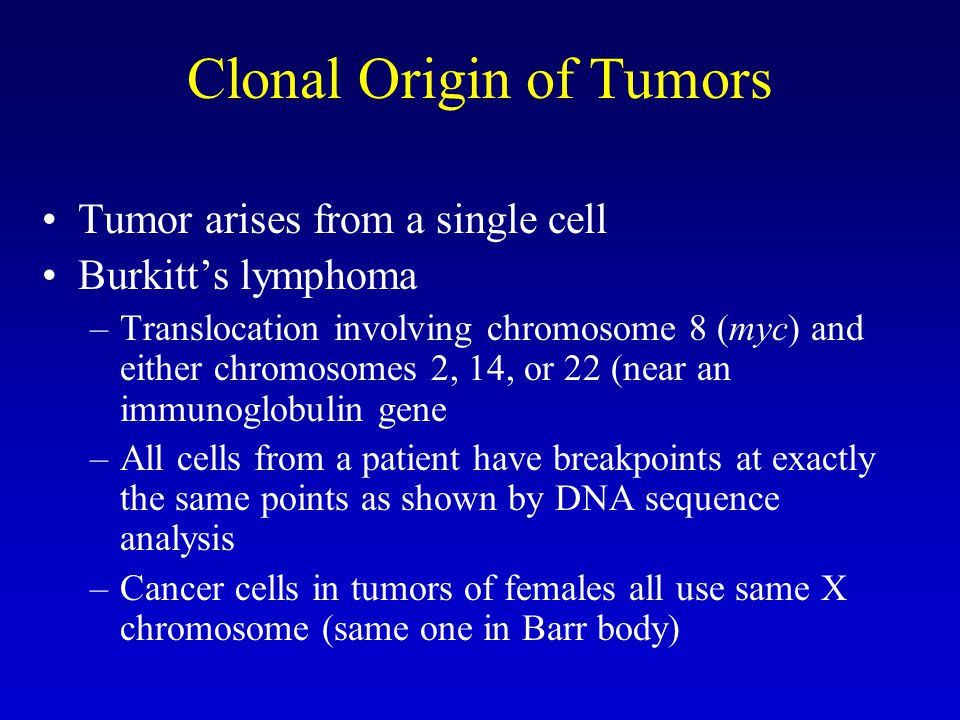 Clonal Origin of Tumors Tumor arises from a single cell Burkitt's lymphoma –Translocation involving chromosome 8 (myc) and either chromosomes 2, 14, or 22 (near an immunoglobulin gene –All cells from a patient have breakpoints at exactly the same points as shown by DNA sequence analysis –Cancer cells in tumors of females all use same X chromosome (same one in Barr body)