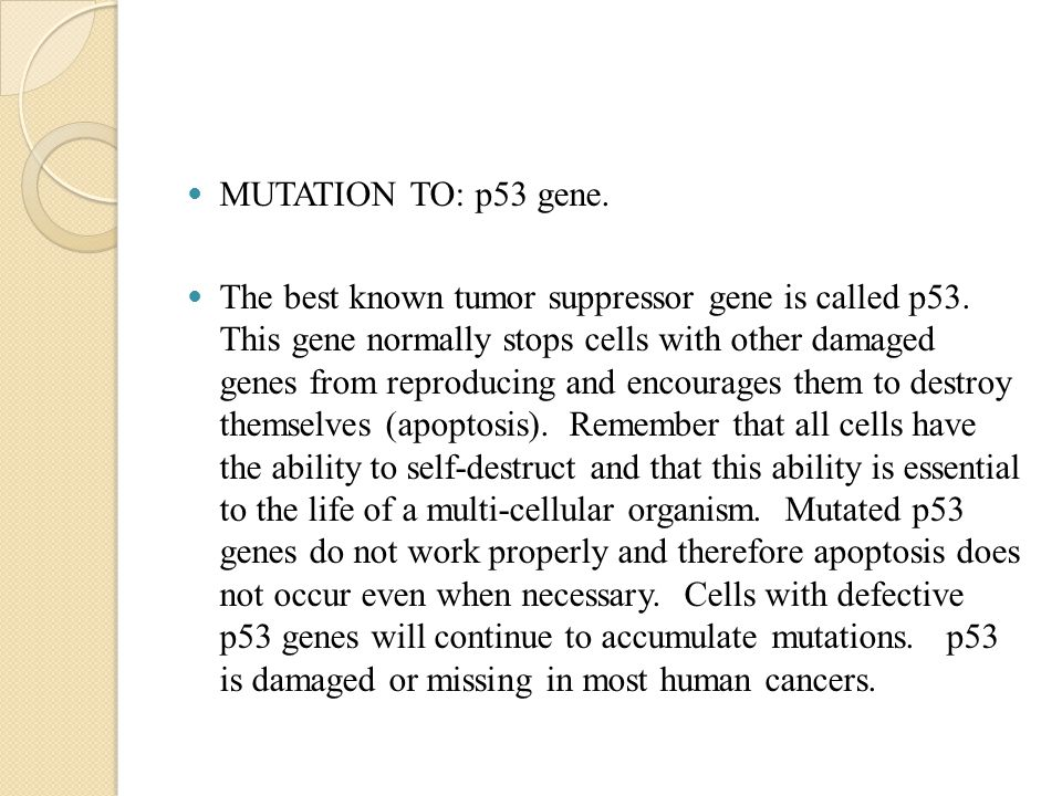 MUTATION TO: p53 gene. The best known tumor suppressor gene is called p53.