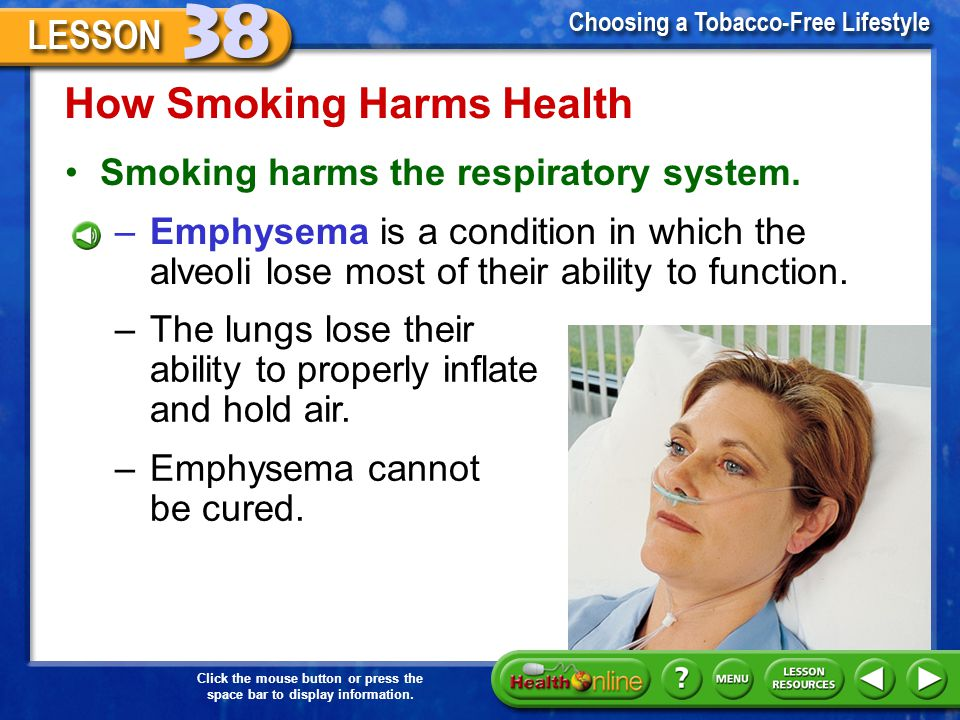 Click the mouse button or press the space bar to display information. How Smoking Harms Health Smoking harms the respiratory system. –Smoking prevents
