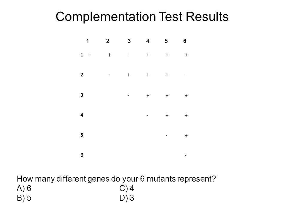 Complementation Test Results 1-+-+++ 2-+++- 3-+++ 4-++ 5-+ 6- 1 2 3 4 5 6 How many different genes do your 6 mutants represent? A) 6 C) 4 B) 5 D) 3