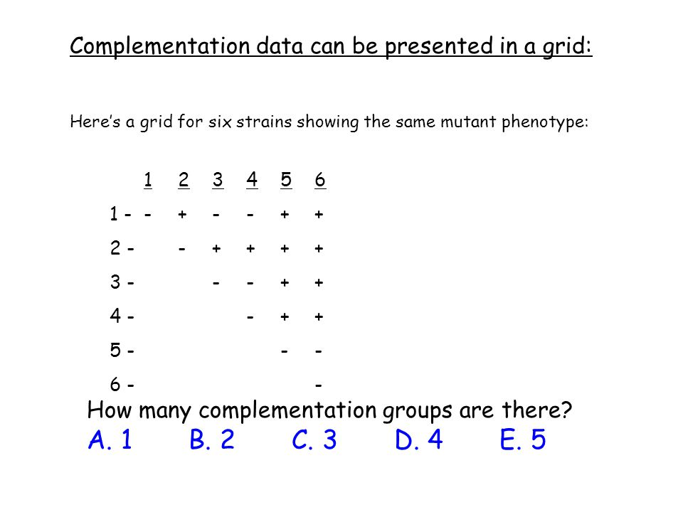 Complementation data can be presented in a grid: How many complementation groups are there? A. 1 B. 2 C. 3 D. 4 E. 5 123456 1 --+--++ 2 --++++ 3 - --+