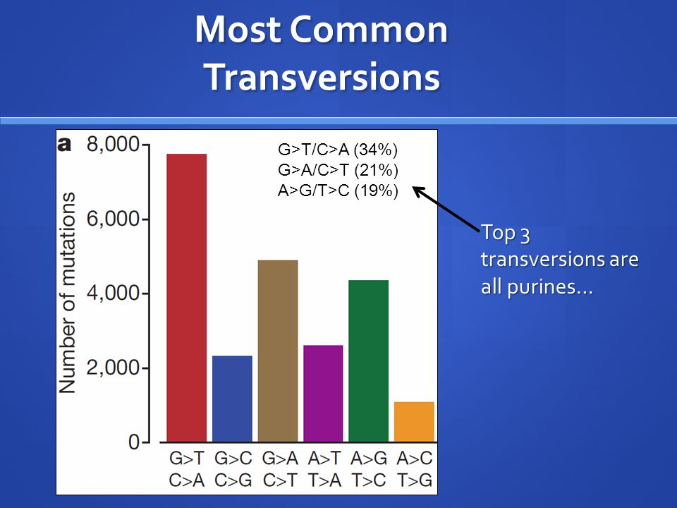 Most Common Transversions G>T/C>A (34%) G>A/C>T (21%) A>G/T>C (19%) Top 3 transversions are all purines…