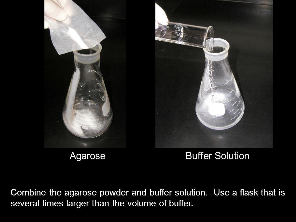 AgaroseBuffer Solution Combine the agarose powder and buffer solution.