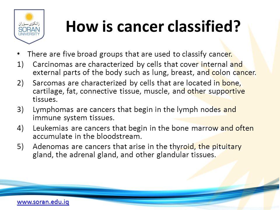 www.soran.edu.iq How is cancer classified.