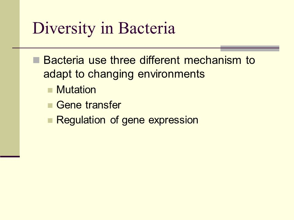Diversity in Bacteria Bacteria use three different mechanism to adapt to changing environments Mutation Gene transfer Regulation of gene expression