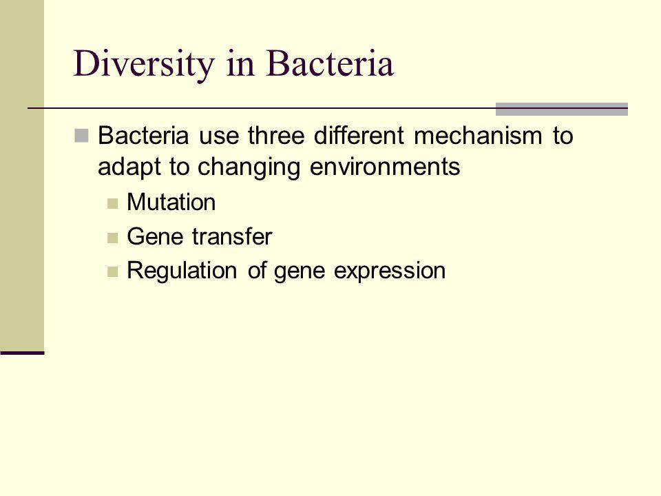 Resistance plasmids