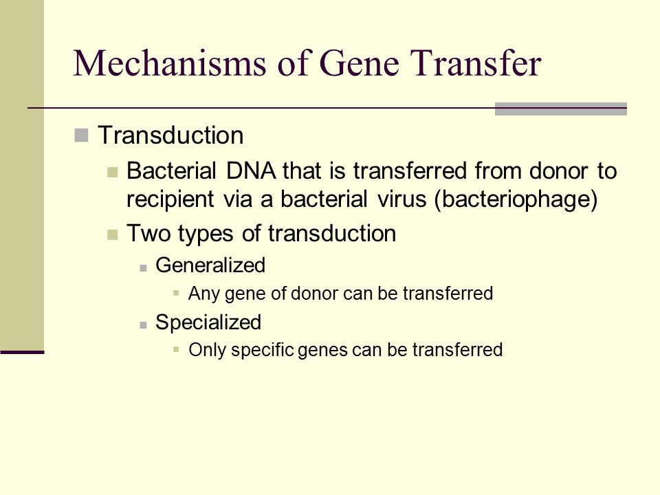 Transduction Bacterial DNA that is transferred from donor to recipient via a bacterial virus (bacteriophage) Two types of transduction Generalized  Any gene of donor can be transferred Specialized  Only specific genes can be transferred Mechanisms of Gene Transfer