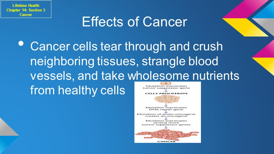 Effects of Cancer Cancer cells tear through and crush neighboring tissues, strangle blood vessels, and take wholesome nutrients from healthy cells Lifetime Health Chapter 14: Section 3 Cancer
