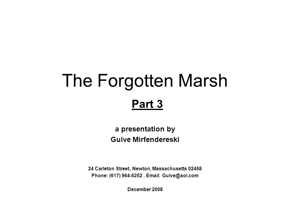 The Forgotten Marsh Part 3 a presentation by Guive Mirfendereski 24 Carleton Street, Newton, Massachusetts 02458 Phone: (617) 964-5252.