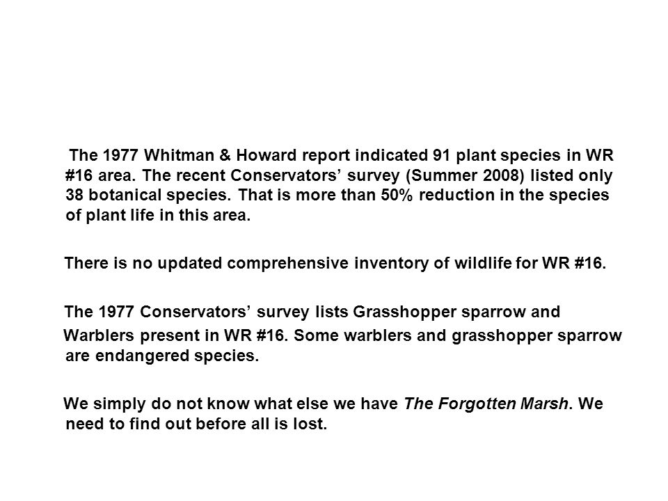 The 1977 Whitman & Howard report indicated 91 plant species in WR #16 area. The recent Conservators' survey (Summer 2008) listed only 38 botanical spe
