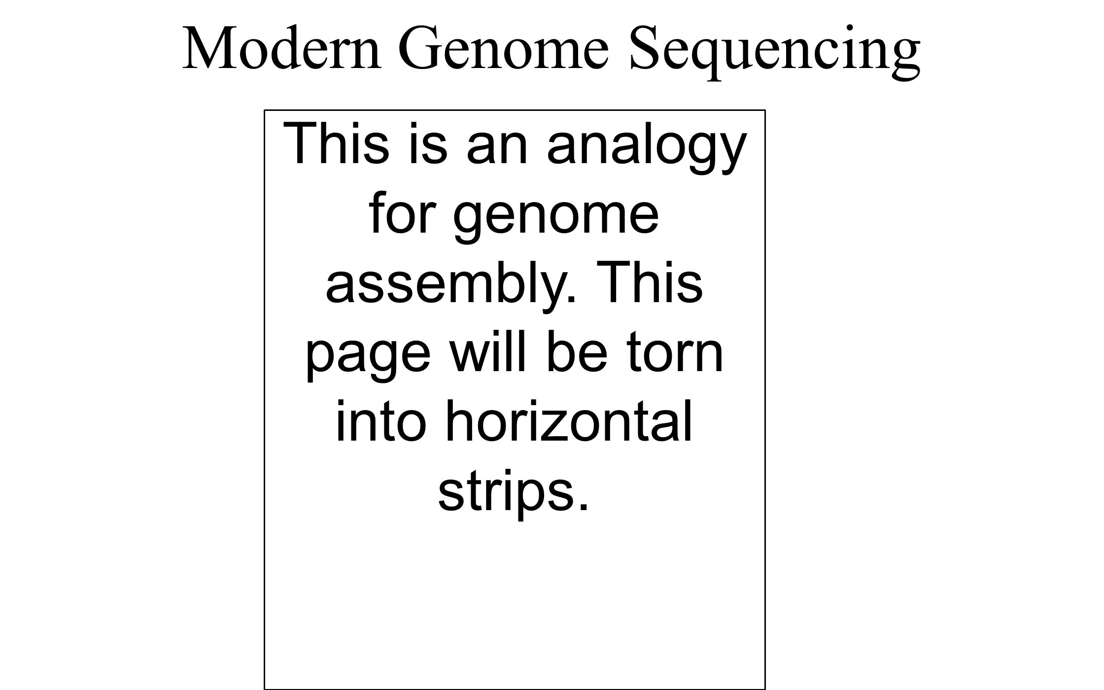 Modern Genome Sequencing