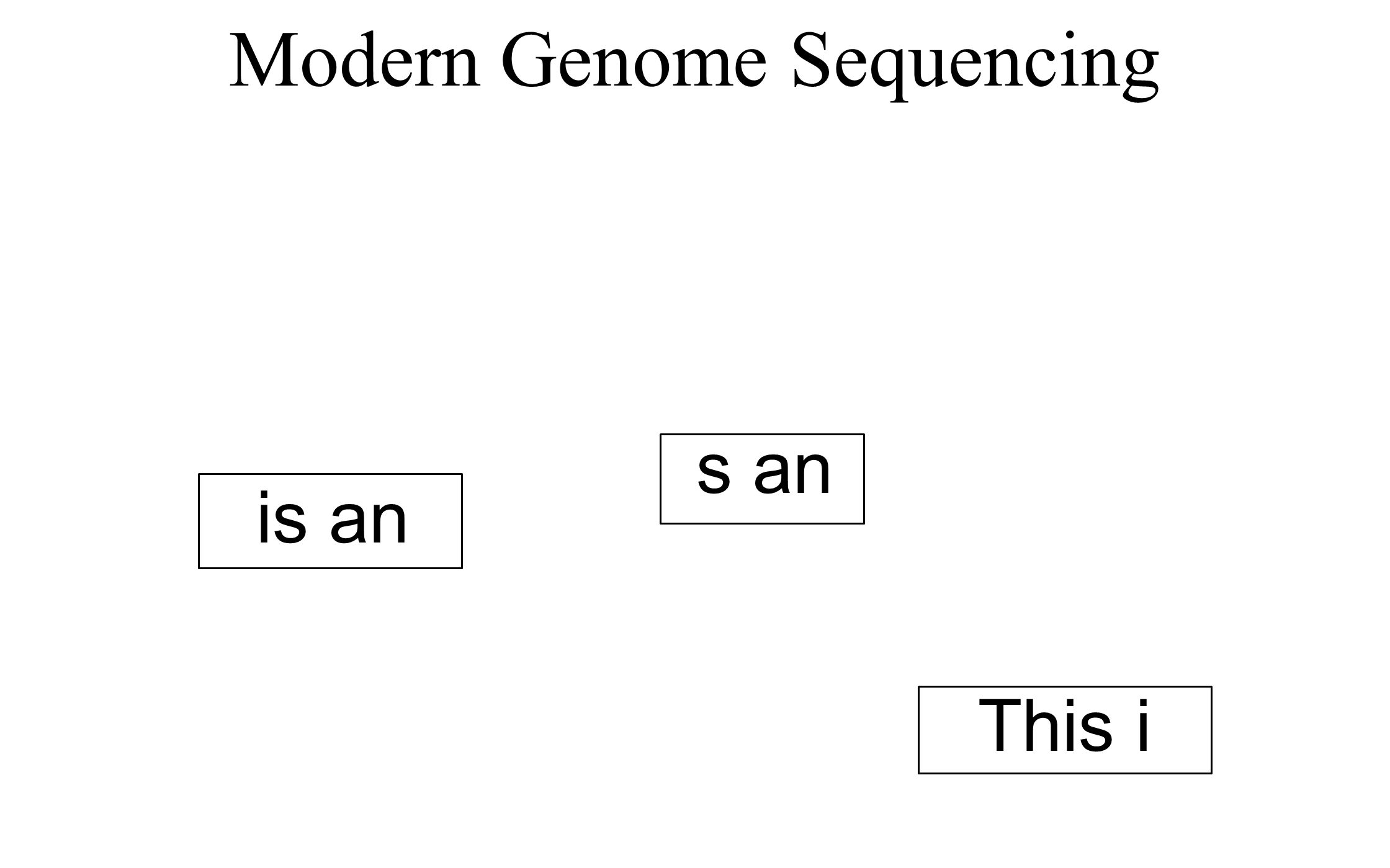 This is an analogy for genome assembly. This page will be torn into horizontal strips.
