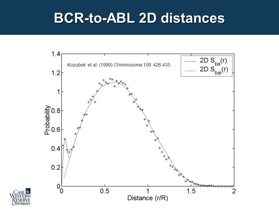 Kozubek et al. (1999) Chromosoma 108: 426-435 BCR-to-ABL 2D distances