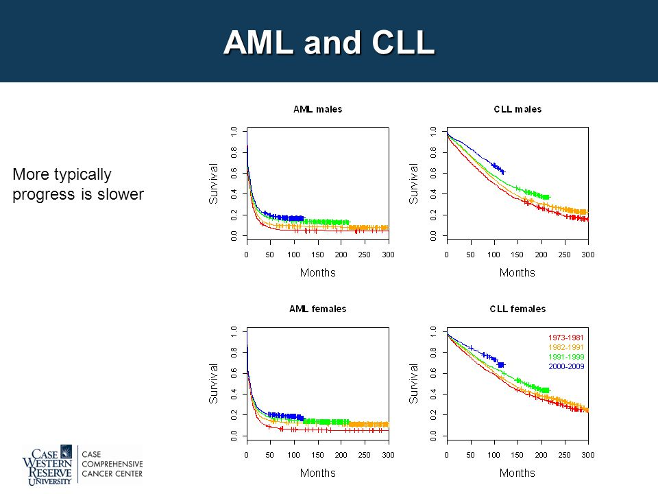 AML and CLL More typically progress is slower