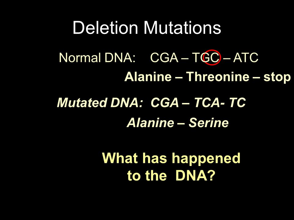 What will happen to the amino acids? Mutated DNA: CGA – TCA- TC A guanine was deleted, thereby pushing all the bases down a frame. Alanine – Threonine