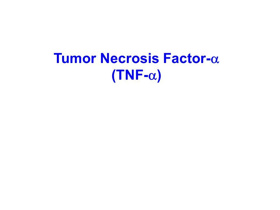 Tumor Necrosis Factor-  (TNF-  )