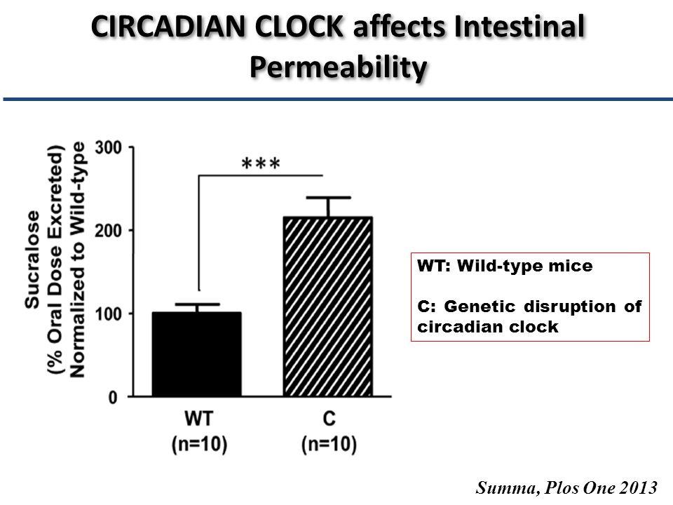 Lambert GP, J Anim Science 2009 SPORT affects Intestinal Permeability
