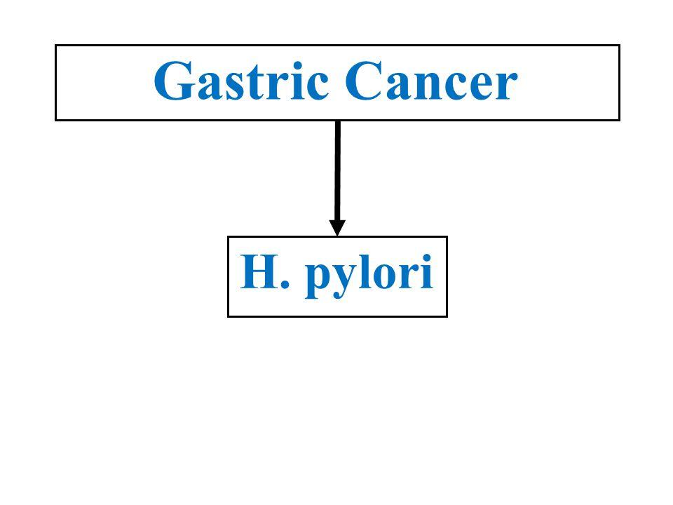 Gastric Cancer H. pylori