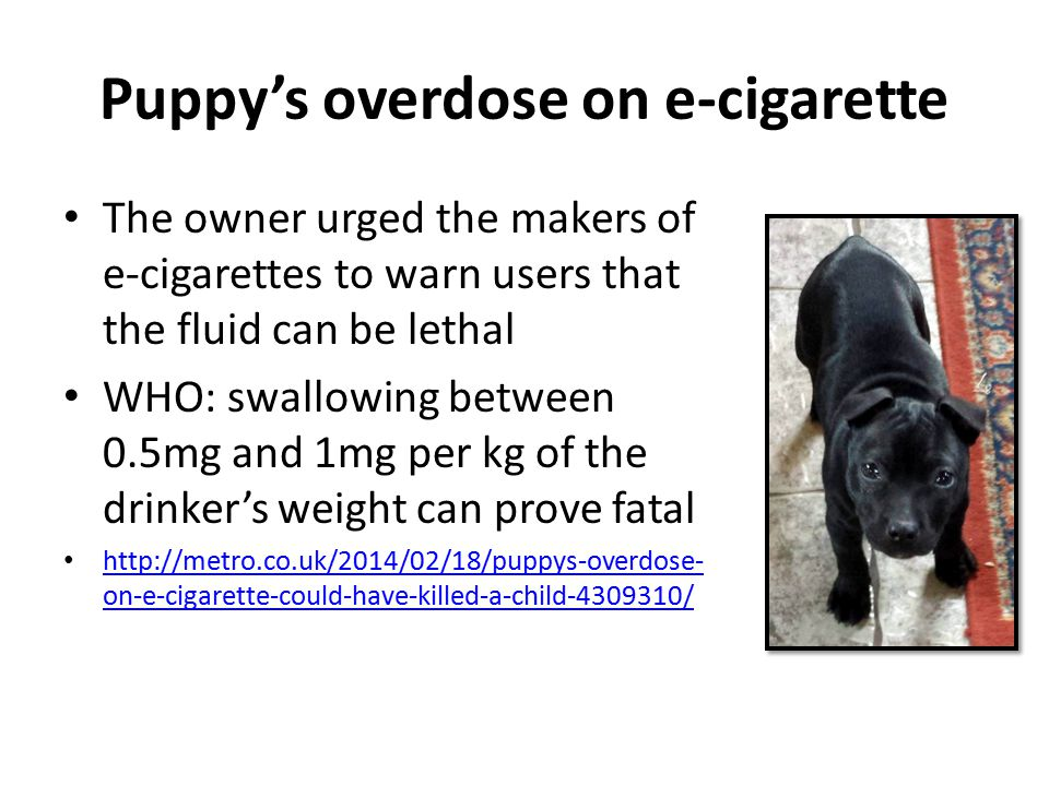 Puppy's overdose on e-cigarette The owner urged the makers of e-cigarettes to warn users that the fluid can be lethal WHO: swallowing between 0.5mg and 1mg per kg of the drinker's weight can prove fatal http://metro.co.uk/2014/02/18/puppys-overdose- on-e-cigarette-could-have-killed-a-child-4309310/ http://metro.co.uk/2014/02/18/puppys-overdose- on-e-cigarette-could-have-killed-a-child-4309310/