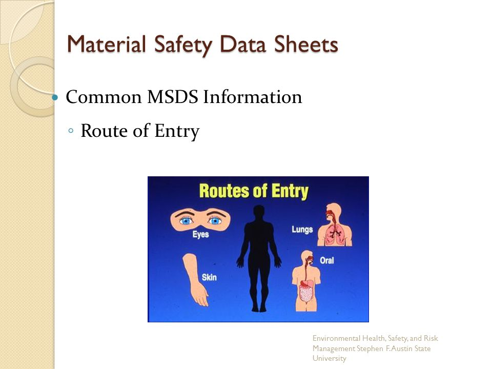 Material Safety Data Sheets Common MSDS Information ◦ Route of Entry Environmental Health, Safety, and Risk Management Stephen F.
