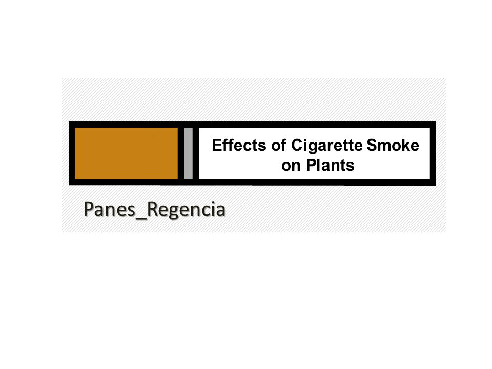 Effects of Cigarette Smoke on Plants Panes_Regencia