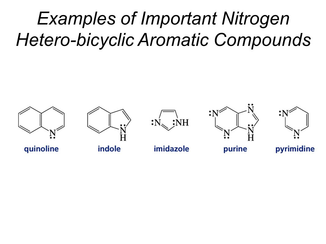Examples of Important Nitrogen Hetero-bicyclic Aromatic Compounds