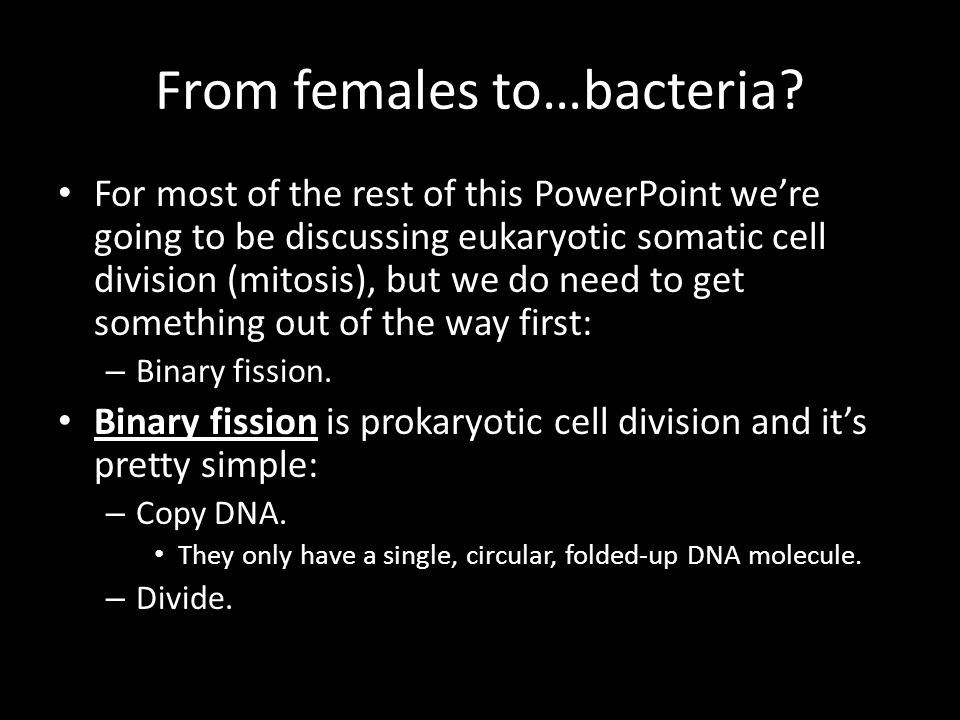 From females to…bacteria.
