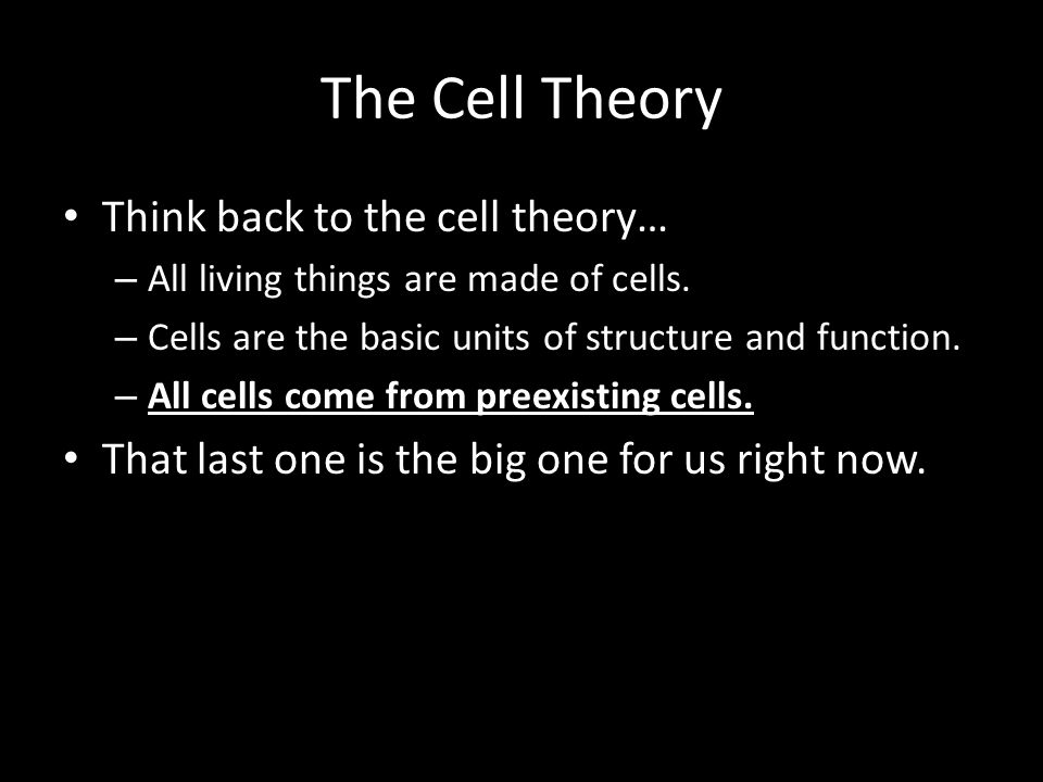The Cell Theory Think back to the cell theory… – All living things are made of cells.