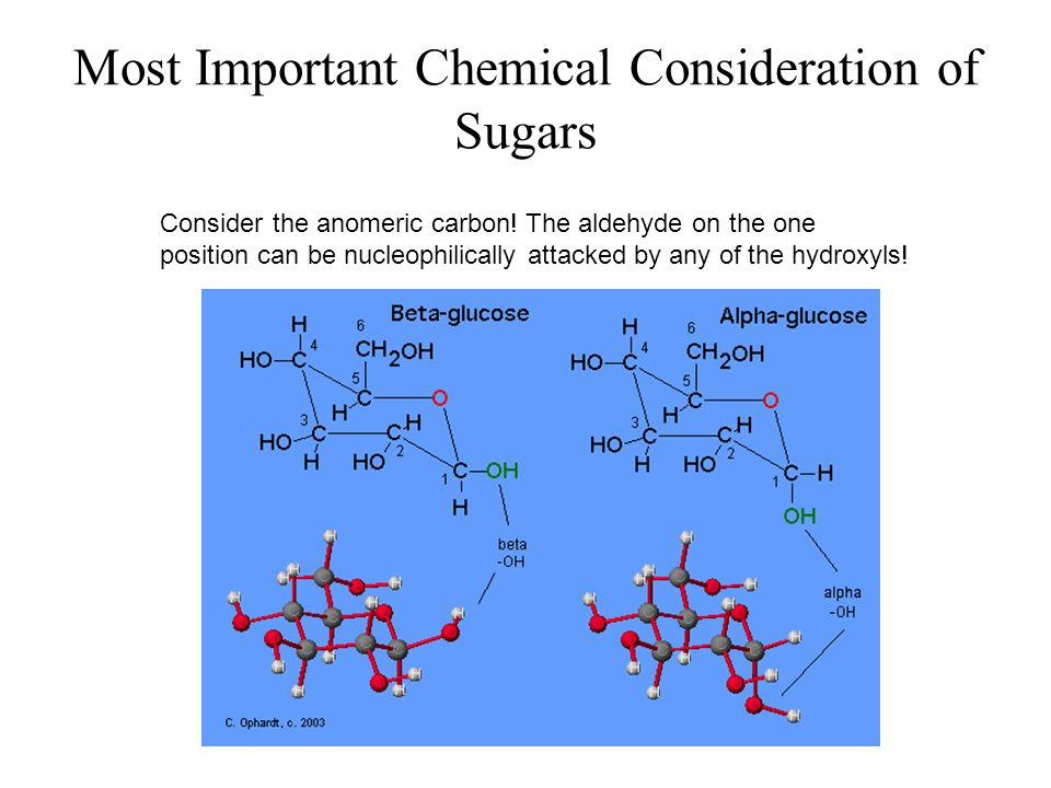 Most Important Chemical Consideration of Sugars Consider the anomeric carbon! The aldehyde on the one position can be nucleophilically attacked by any