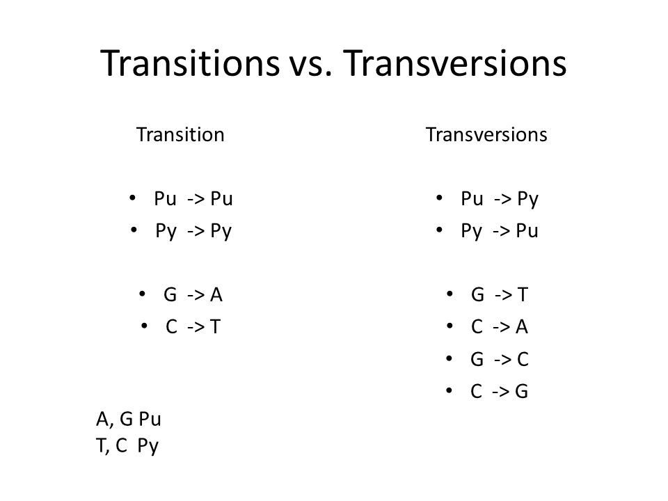 Transitions vs.