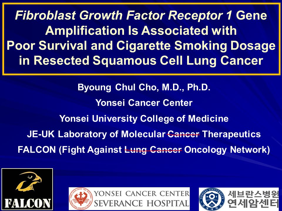 Byoung Chul Cho, M.D., Ph.D. Yonsei Cancer Center Yonsei University College of Medicine JE-UK Laboratory of Molecular Cancer Therapeutics FALCON (Figh