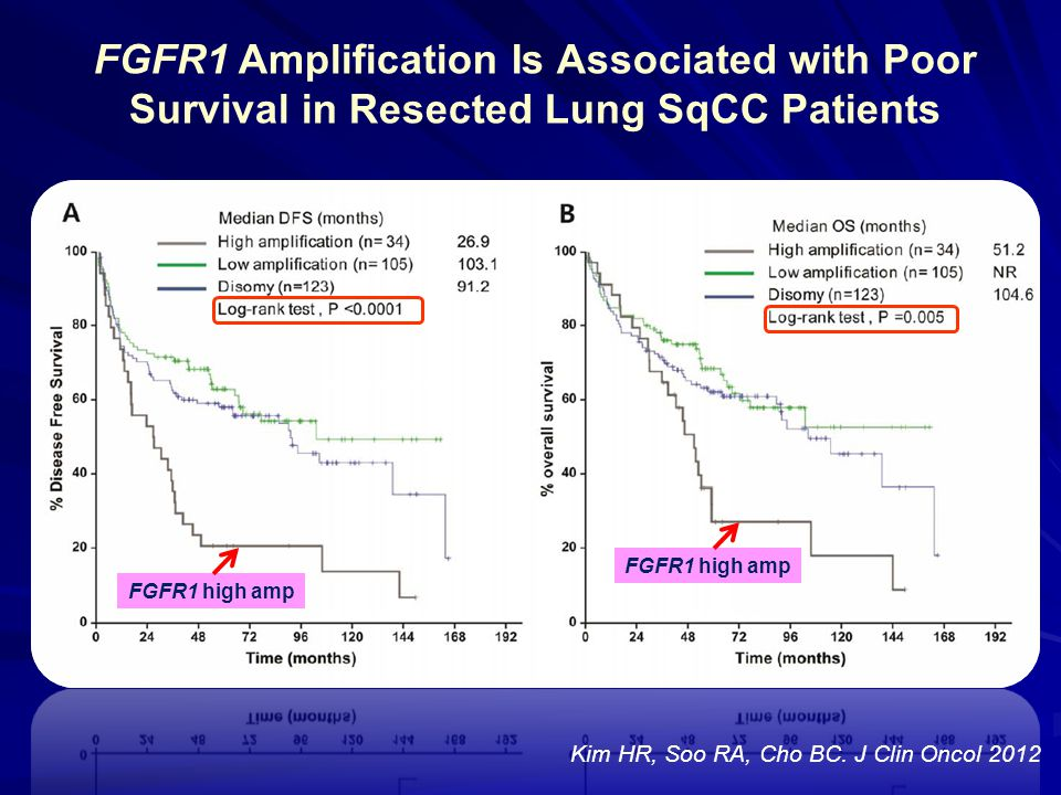 FGFR1 Amplification Is Associated with Poor Survival in Resected Lung SqCC Patients FGFR1 high amp Kim HR, Soo RA, Cho BC. J Clin Oncol 2012