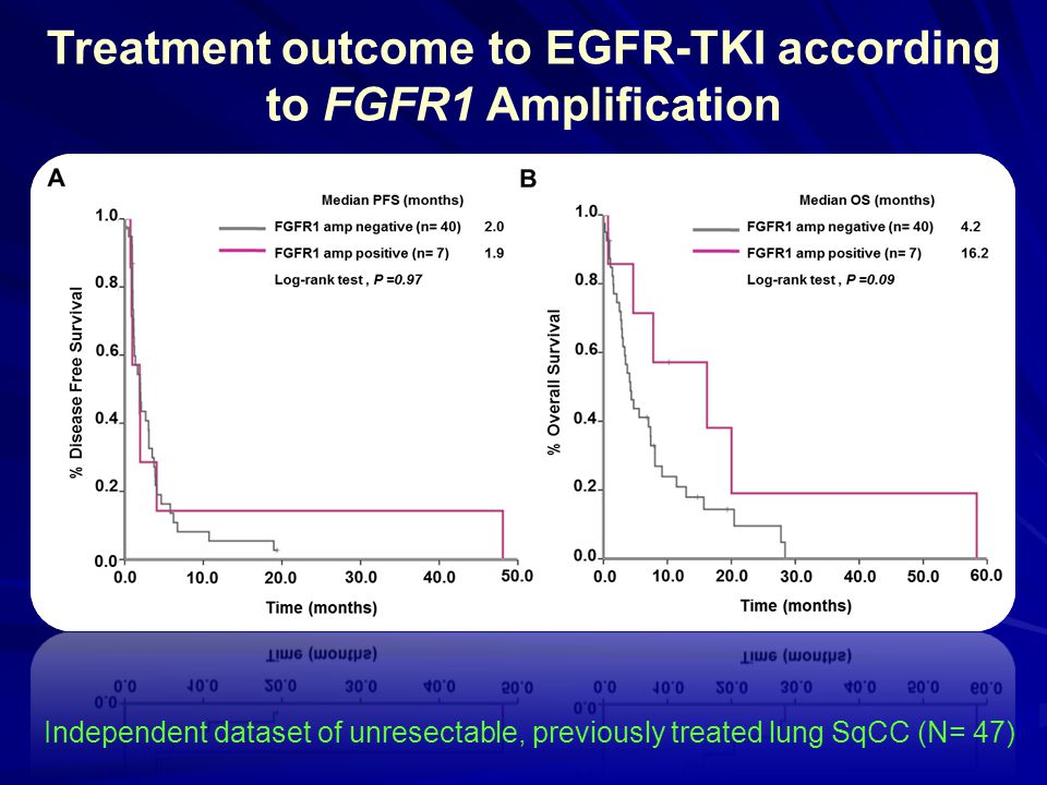 Treatment outcome to EGFR-TKI according to FGFR1 Amplification Independent dataset of unresectable, previously treated lung SqCC (N= 47)