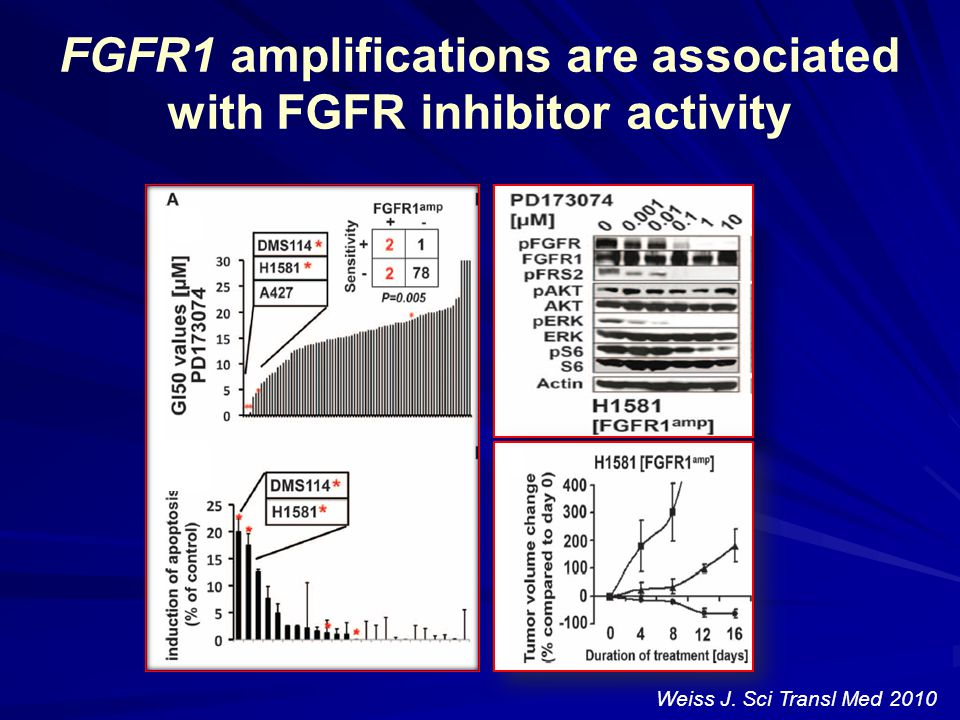 FGFR1 amplifications are associated with FGFR inhibitor activity Weiss J. Sci Transl Med 2010