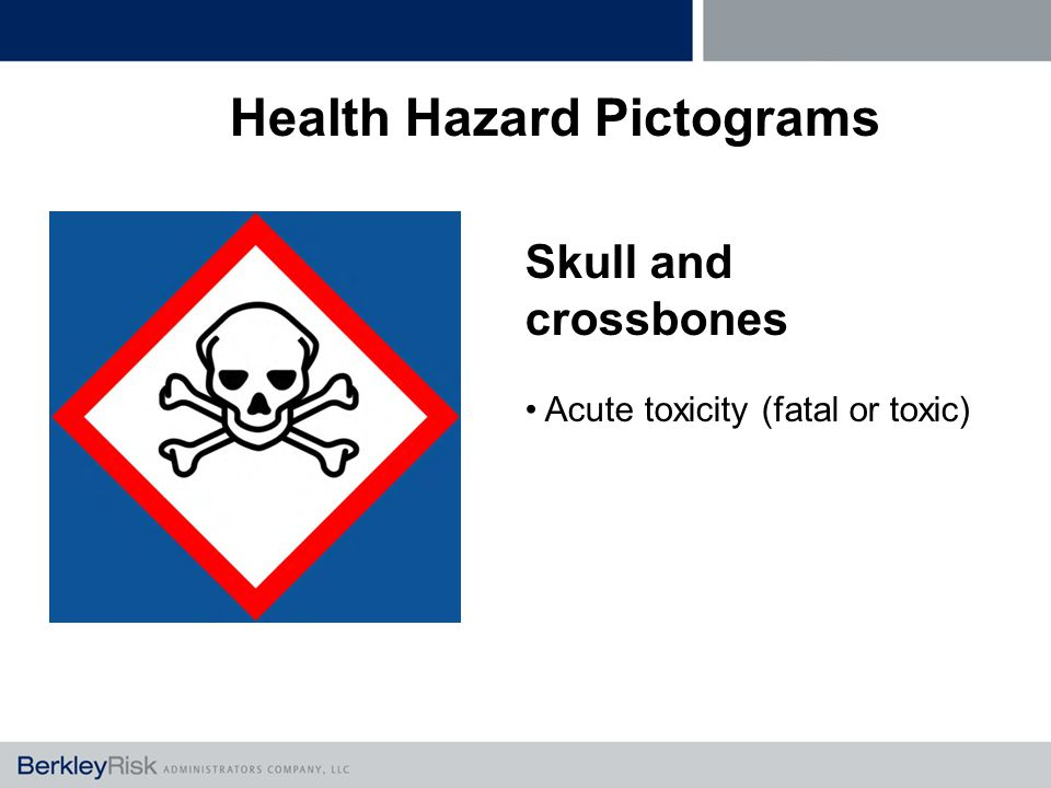 Skull and crossbones Acute toxicity (fatal or toxic) Health Hazard Pictograms