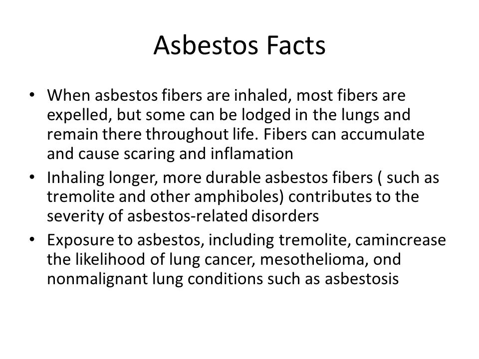 Asbestos Facts When asbestos fibers are inhaled, most fibers are expelled, but some can be lodged in the lungs and remain there throughout life.