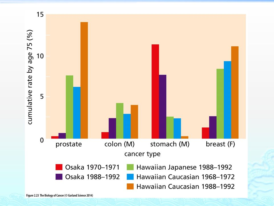 Country-to-country comparisons of cancer incidence