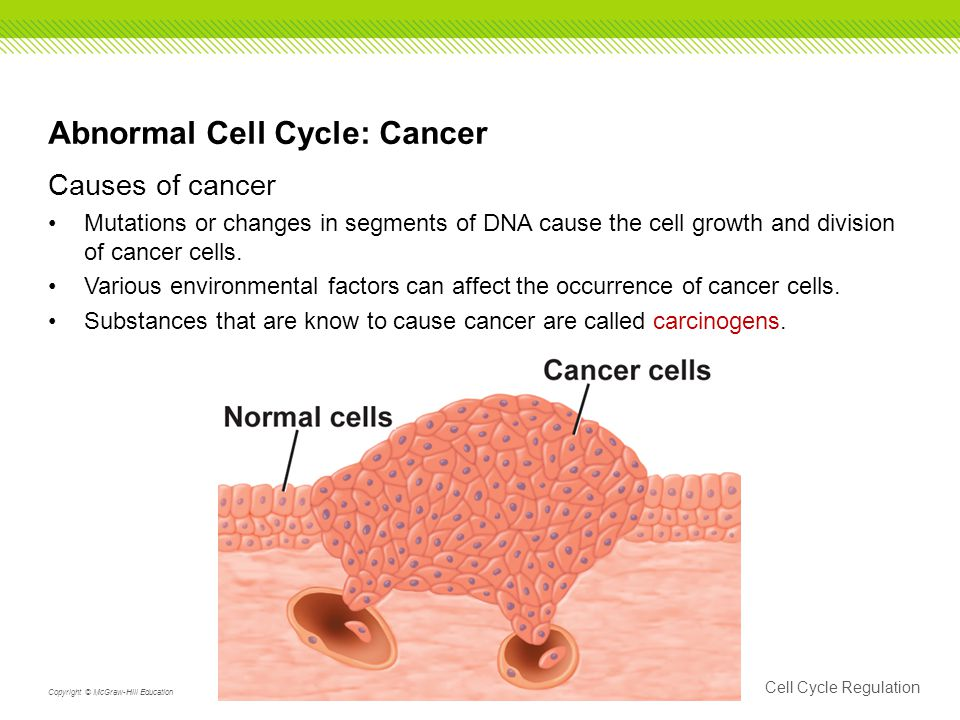 Abnormal Cell Cycle: Cancer Causes of cancer Mutations or changes in segments of DNA cause the cell growth and division of cancer cells.