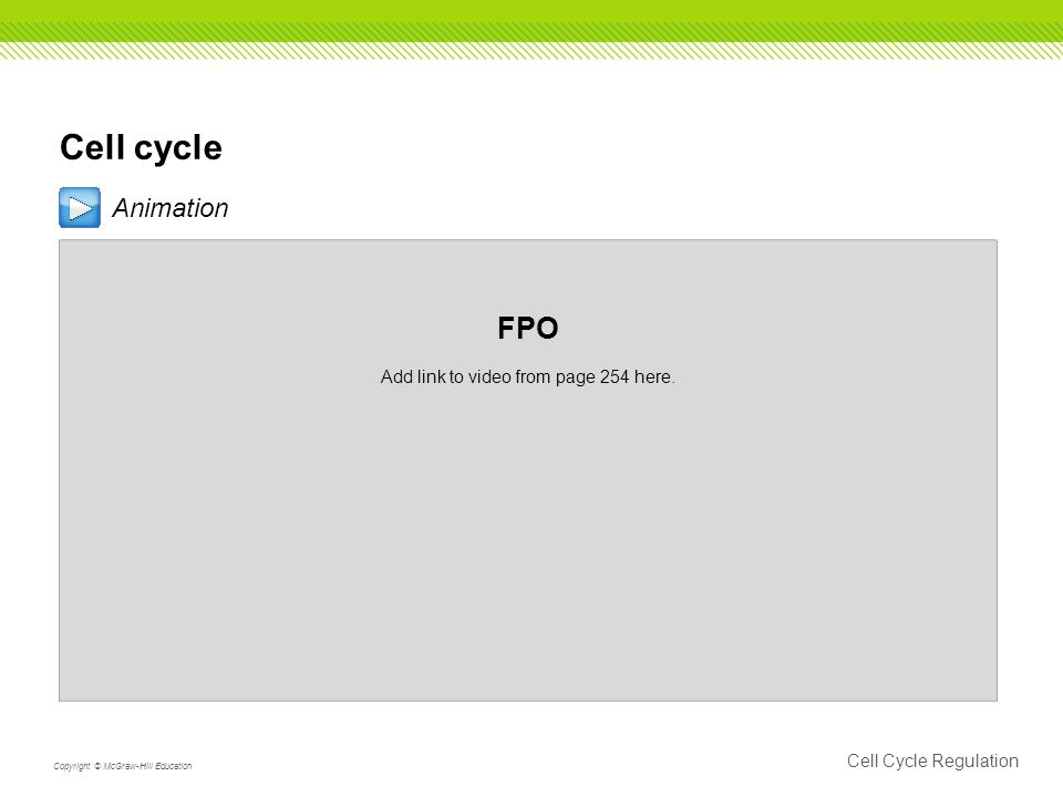 Cell cycle Animation FPO Add link to video from page 254 here.