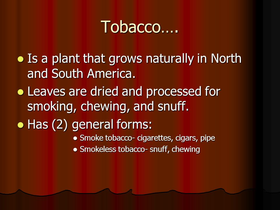 The Spread of Tobacco Tobacco use dates back 1,000 years ago.