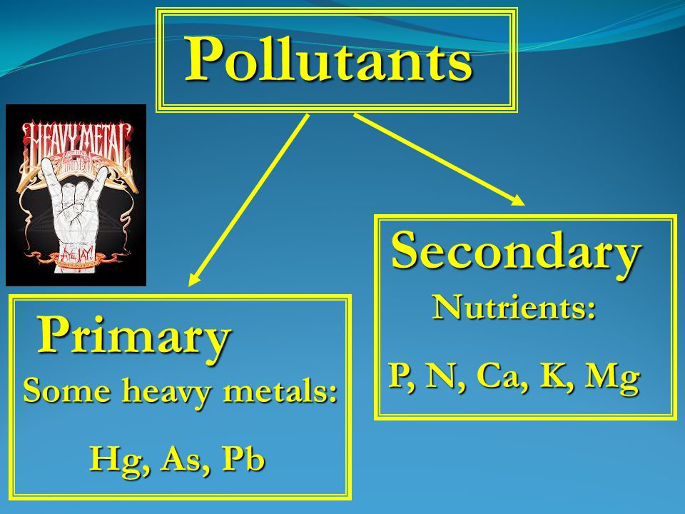Pollutants Primary Secondary Some heavy metals: Some heavy metals: Hg, As, Pb Nutrients: P, N, Ca, K, Mg
