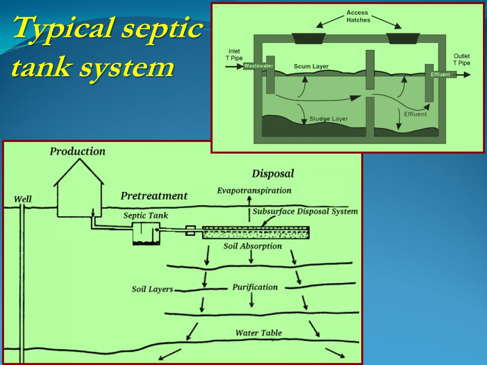 Typical septic tank system