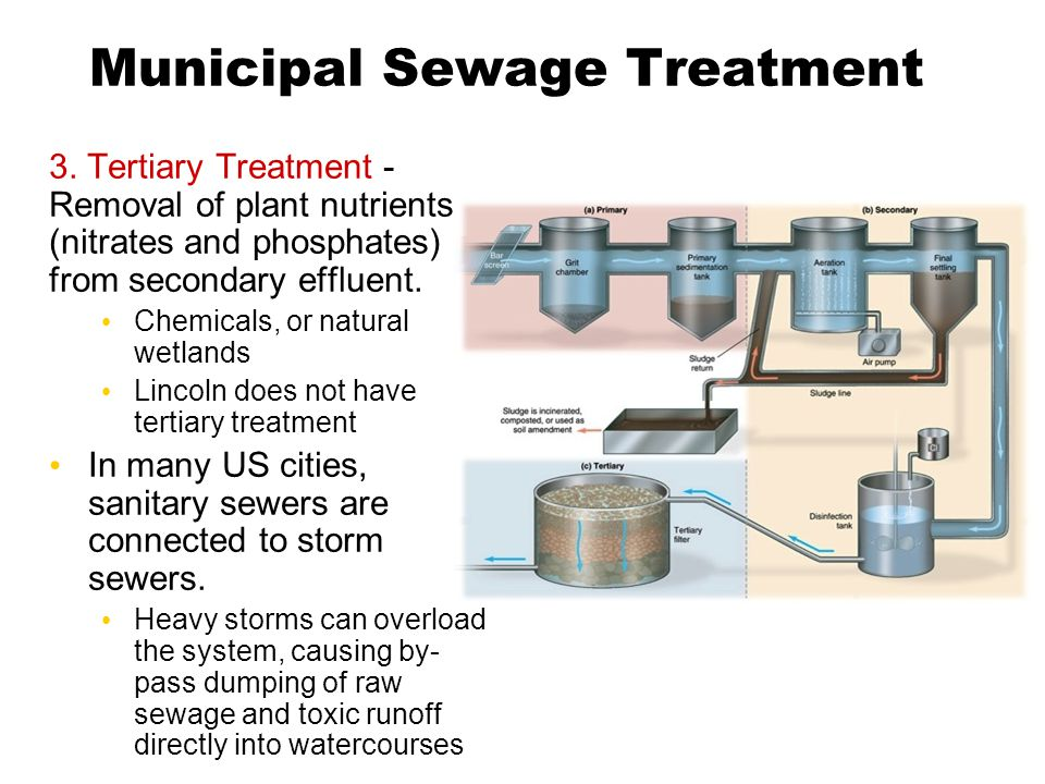 Municipal Sewage Treatment 3. Tertiary Treatment - Removal of plant nutrients (nitrates and phosphates) from secondary effluent. Chemicals, or natural