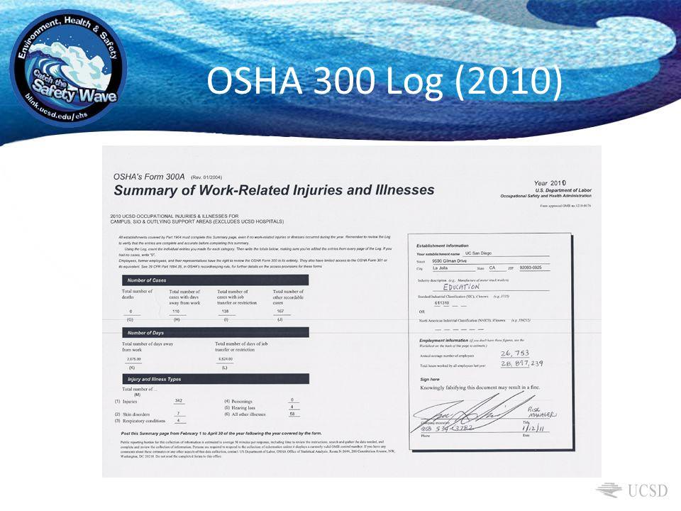 OSHA 300 Log (2010)