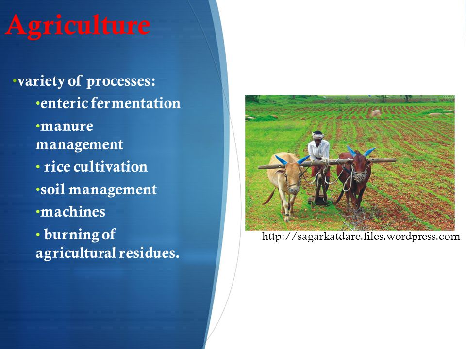 Agriculture variety of processes: enteric fermentation manure management rice cultivation soil management machines burning of agricultural residues.