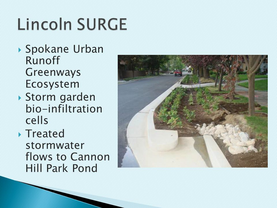  Spokane Urban Runoff Greenways Ecosystem  Storm garden bio-infiltration cells  Treated stormwater flows to Cannon Hill Park Pond
