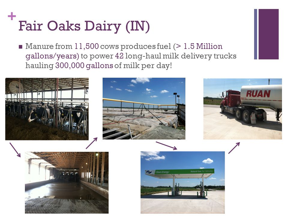 + Fair Oaks Dairy (IN) Manure from 11,500 cows produces fuel (> 1.5 Million gallons/years) to power 42 long-haul milk delivery trucks hauling 300,000 gallons of milk per day!