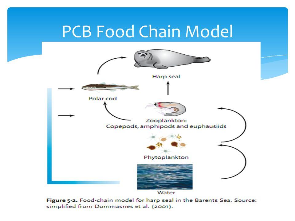 PCB Food Chain Model