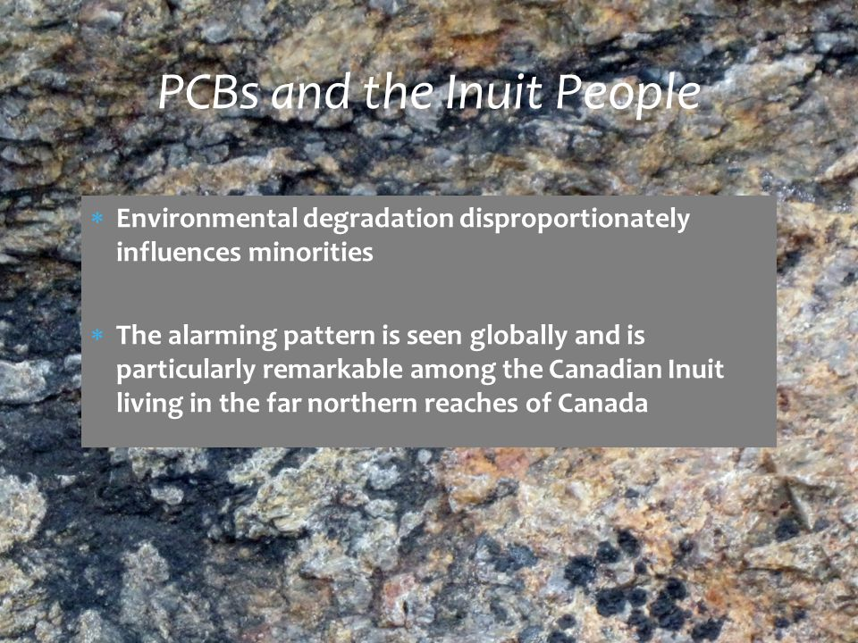  Environmental degradation disproportionately influences minorities  The alarming pattern is seen globally and is particularly remarkable among the